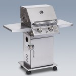 Design-Gasgrill »Bearfoot 2«
